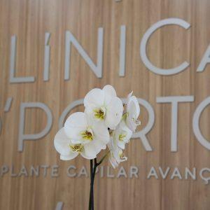 Clínica, Clínica O'Porto, Clínica Porto, Transplante Capilar, Galeria
